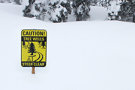 Tree Well & Deep Snow Safety